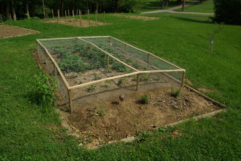 Protecting Garden From Animals Part - 36: Vegetable Garden Spring 2011